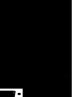 PSONI w Żychlinie